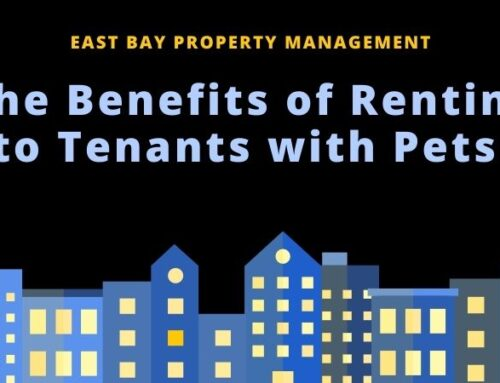 The Benefits of Renting to Tenants with Pets
